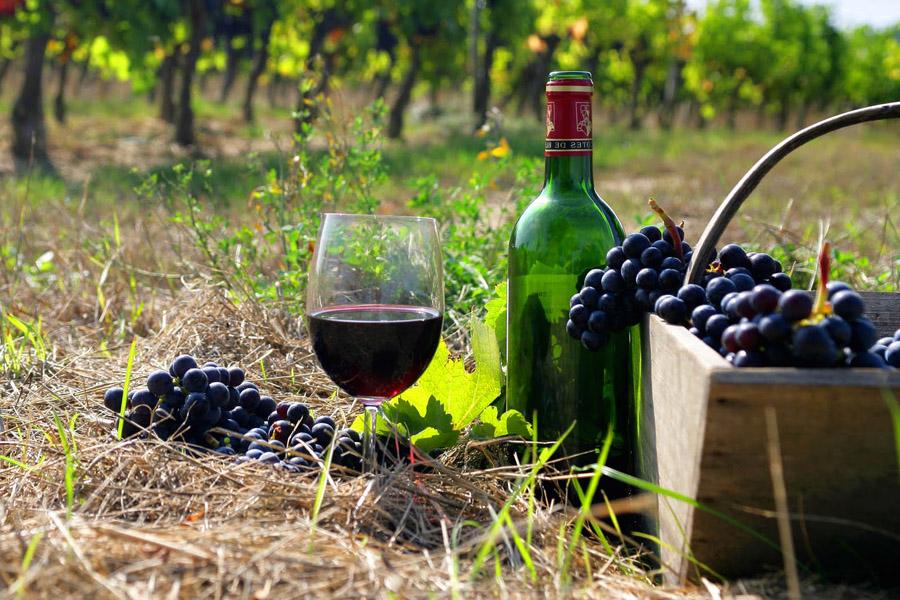 armenia-wine-1